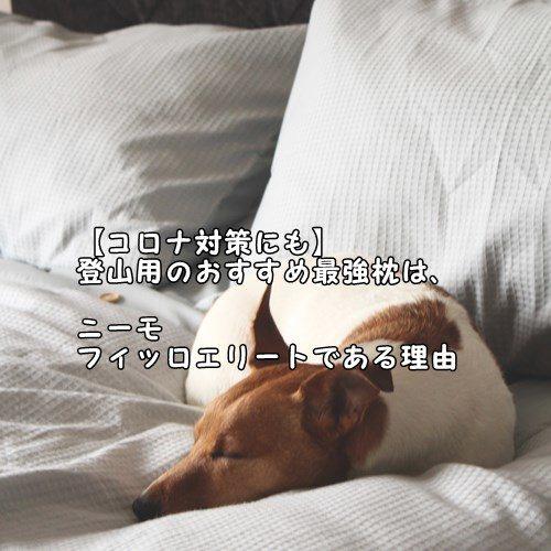 【コロナ対策にも】登山用のおすすめ最強枕は、ニーモのフィッロエリートである理由
