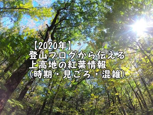【2020年】登山ブログから伝える上高地の紅葉情報(時期・見ごろ・混雑)